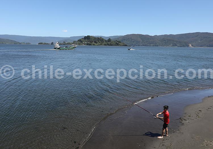 Rio Valdivia
