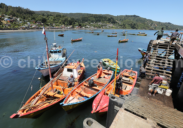 Port de pêche, Los Molinos, Chili