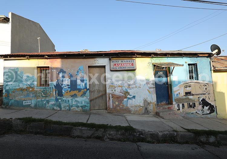 Rues du Cerro Florida, Valparaiso