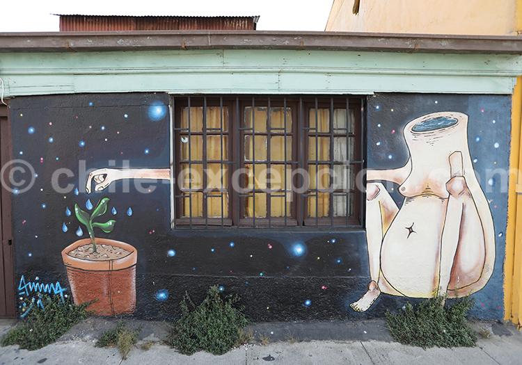 Le meilleur street art du Cerro Florida, Valparaiso