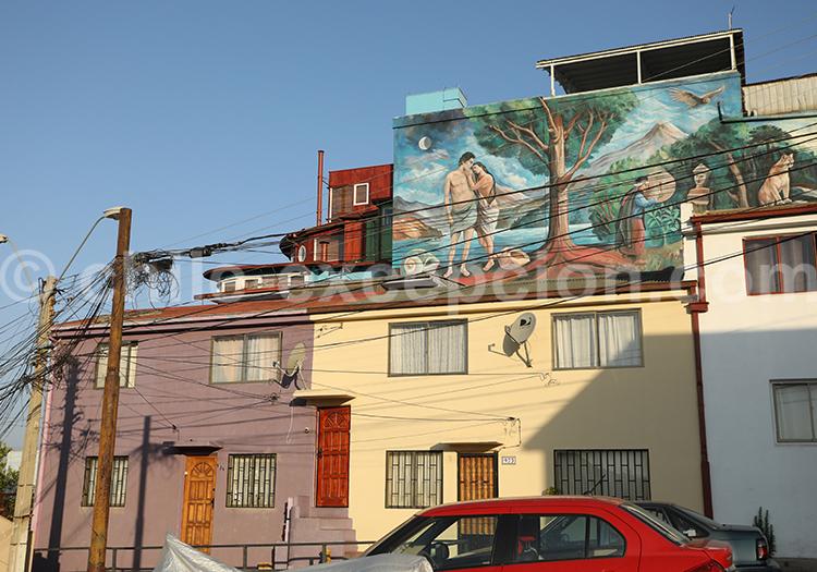 Visiter le Cerro Florida, Valparaiso