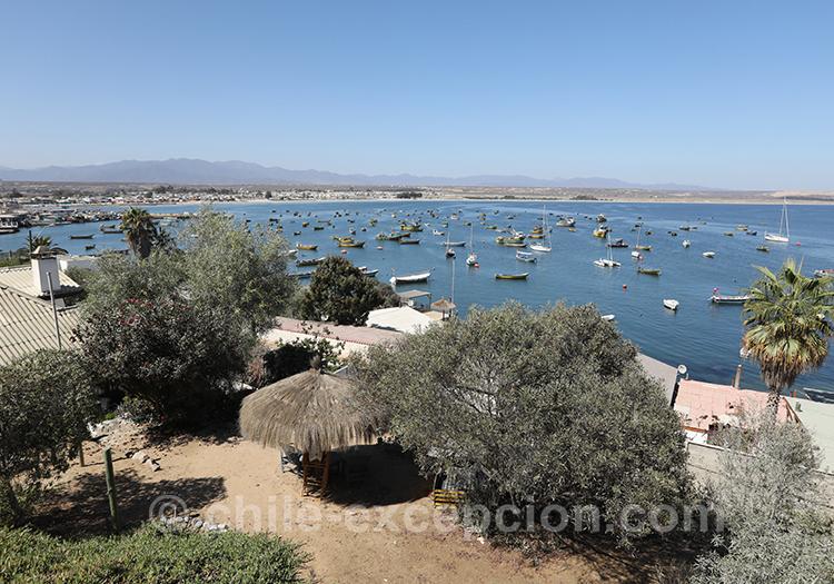 Tongoy, Nord du Chili