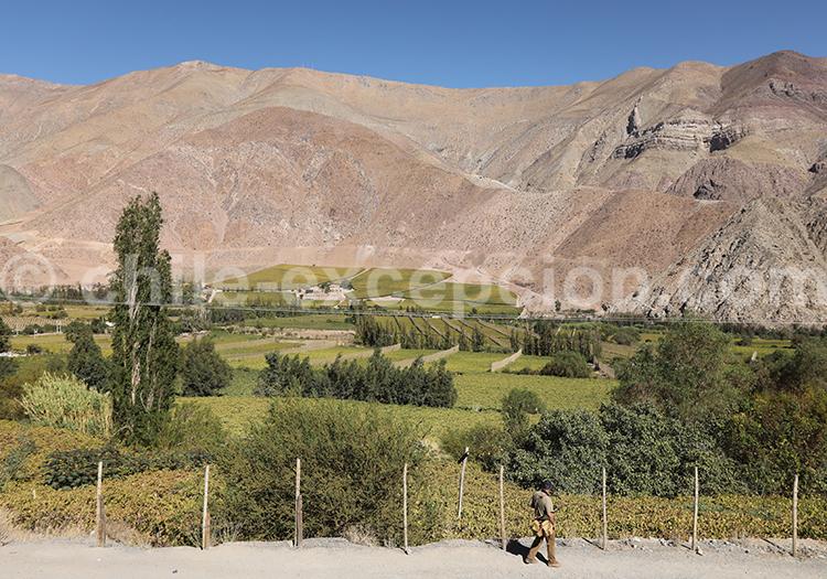 Village de Paihuano, Chili