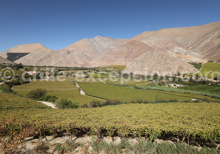 Village de Paihuano, Nord du Chili