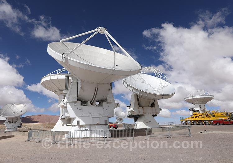 Agence de voyage locale au Chili, Atacam