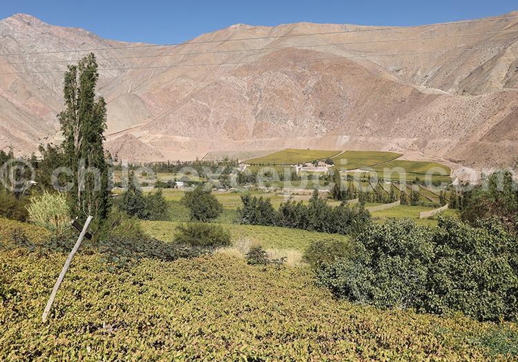 Voyage autotour, Paihuano, Chili