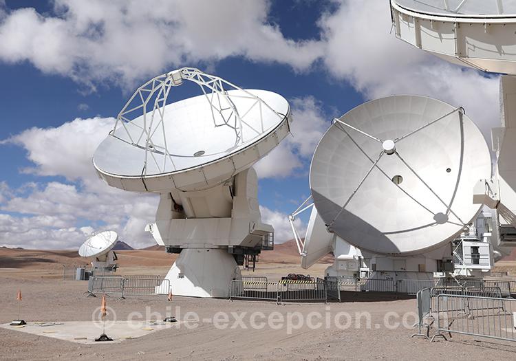 Nos excursions privées dans le désert d'Atacama