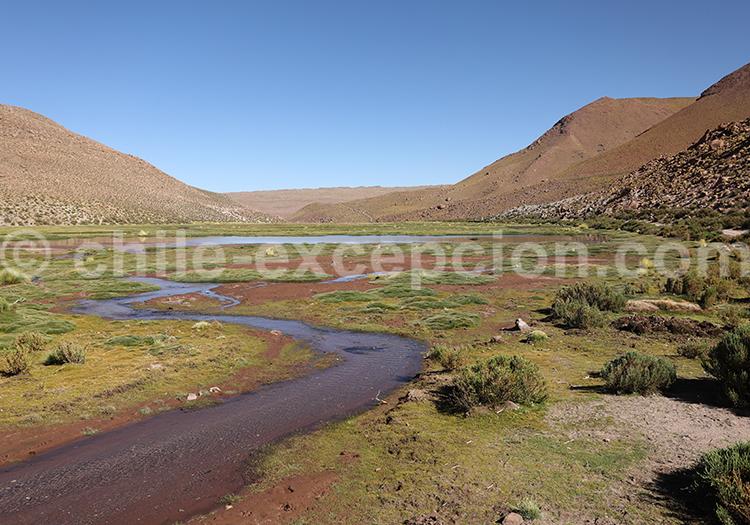 Rio Grande, Machuca