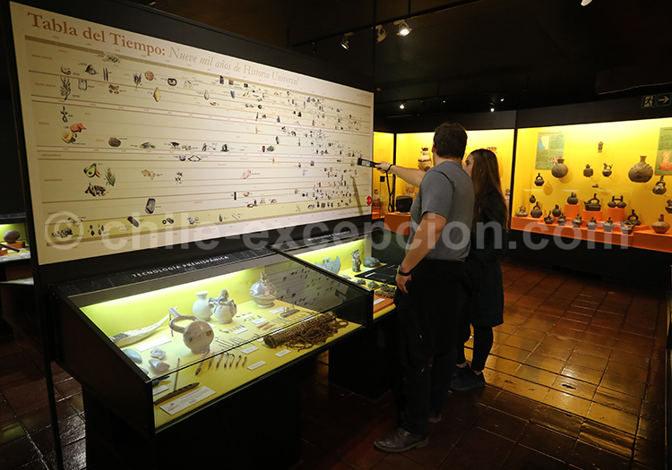Musée paléontologique, archéologique et d'histoire du Chili