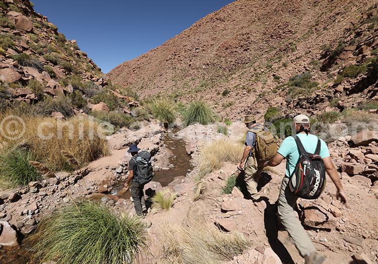 Trekking autour de San Pedro de Atacama, Nord du Chili