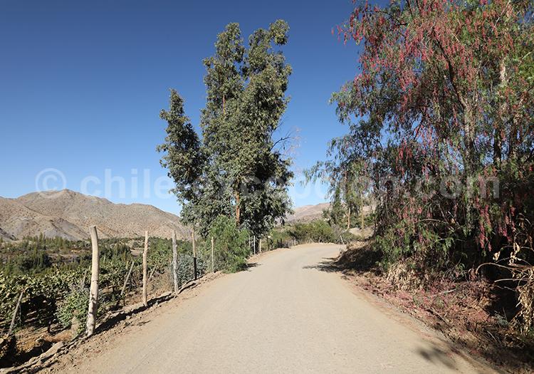 Route Antakiri, Observatoires astronomiques, Chili