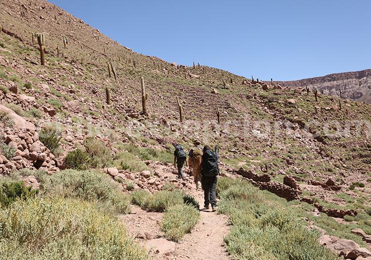 Excursion Camino del Inca