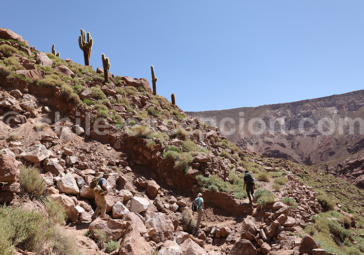 Trekking Machuca Rio Grande, voyage au Chili