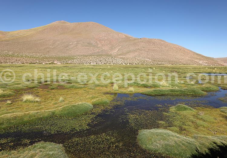 Excursion Machuca Rio Grande