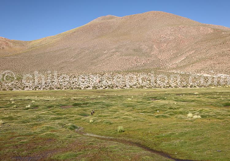 Trekking de 5 heures, Machuca, Chili