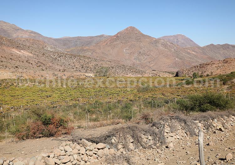 Route Antakiri, désert du Chili