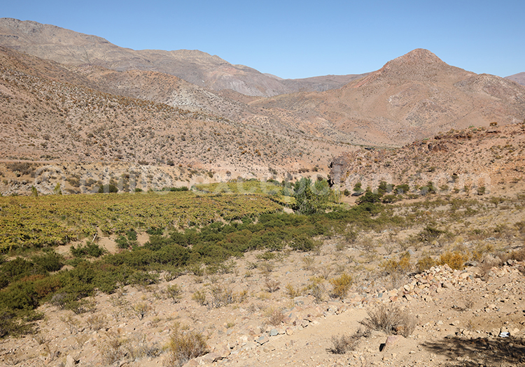 Circuit autotour Chili Bolivie
