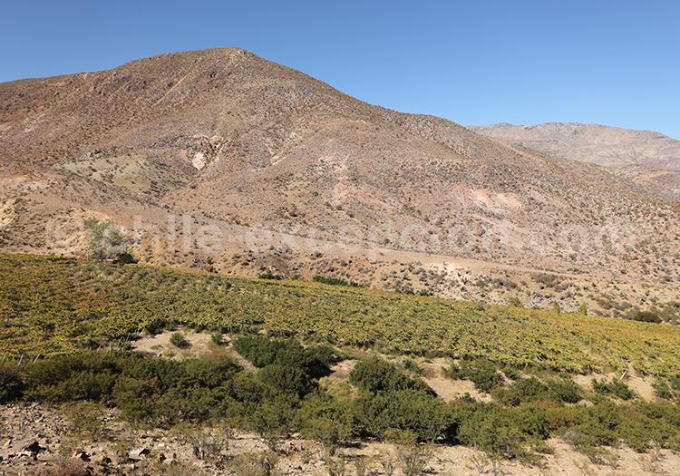 Circuit Nord du Chili