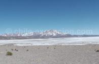 Salar de Surire, Arica, Chili