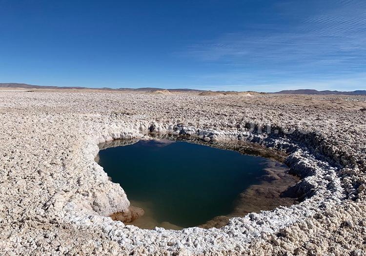 Écosystème du désert et Altiplano, Chili