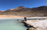 Thermes de Polloquere, Surire, Bolivie