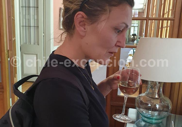 Dégustation à Casa Real, vin de Santa Rita, Chili
