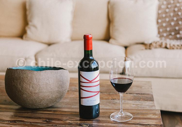 Bouteille de Vino tinto du Chili, Viña Vik, vallée de Millahue, Centre Chili avec l'agence de voyage Chile Excepción
