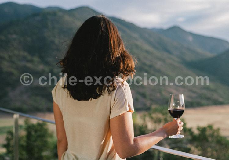 Dégustation de vins chiliens, Viña Vik, vallée de Millahue, Centre Chili avec l'agence de voyage Chile Excepción