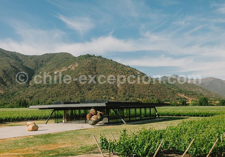 Magnifique bodega du Chili, Viña Vik, vallée de Millahue, Centre Chili avec l'agence de voyage Chile Excepción