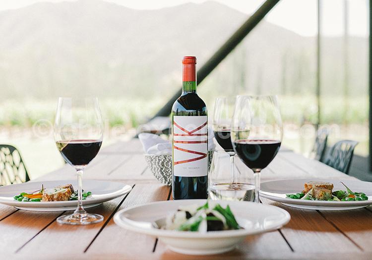 Vin rouge du Chili, Viña Vik, vallée de Millahue, Centre Chili avec l'agence de voyage Chile Excepción