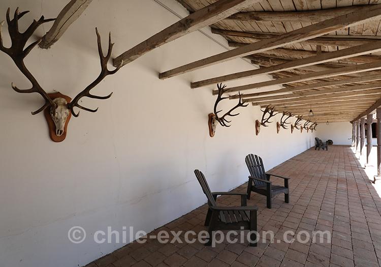 Magnifique hôtel boutique Casa Bouchon, Chili