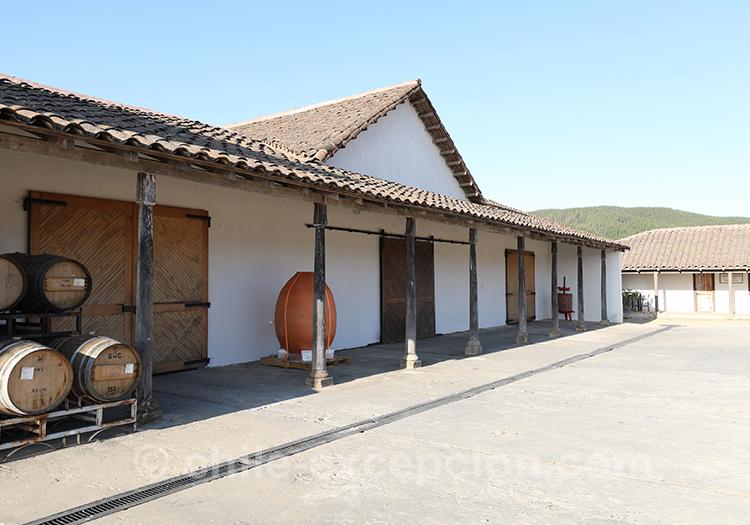 Que voir à la bodega Casa Bouchon; Chili