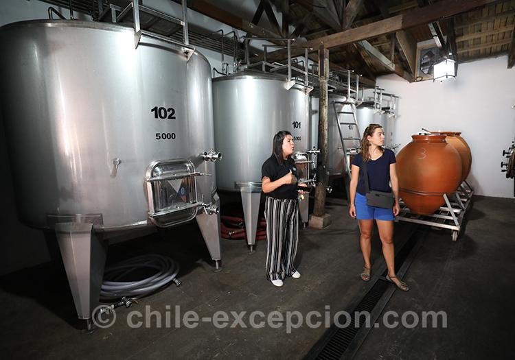 Visite guidée francophone à la Casa Bouchon, vallée del Maule, Chili