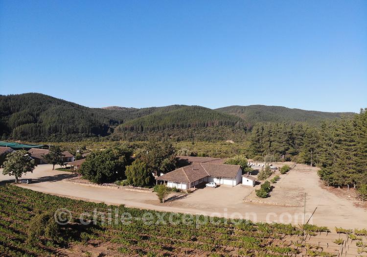 Vue aérienne sur les vignes de Casa Bouchon, Maule, Chili