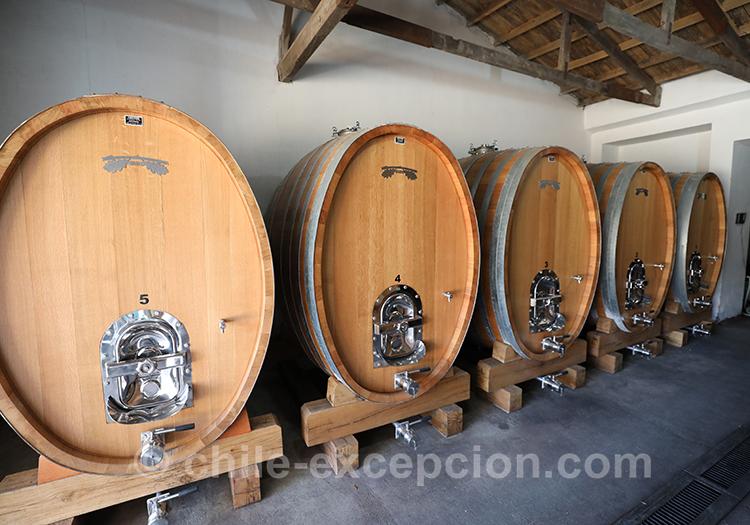 Tonneaux des cépages de la Casa Bouchon, Chili