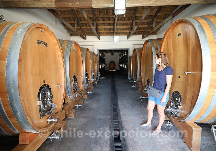 Visiter Casa Bouchon, superbe bodega de la vallée del Maule
