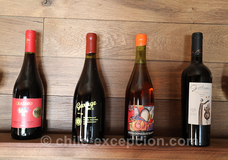 Découvrir le vin chilien à la Casa Bouchon, vallée del Maule, Chili