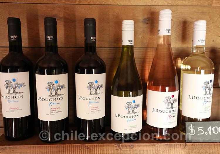 Découvrir le vin chilien à la viña Casa Bouchon, Chili