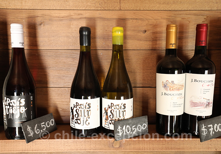 Les vins de la bodega Casa Bouchon, Chili