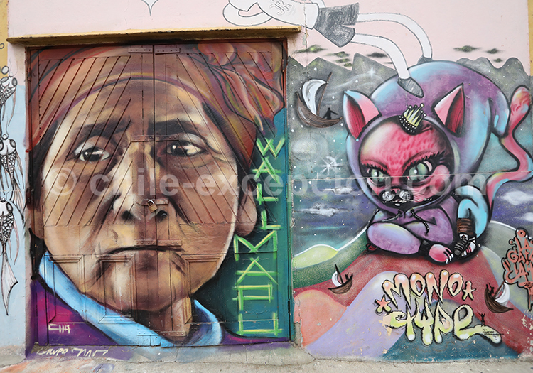 Street art, Au fil des rues, Valparaiso, région centre, Chili