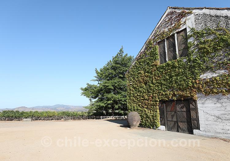 Bienvenue à Casa Bouchon, vallée del Maule au Chili