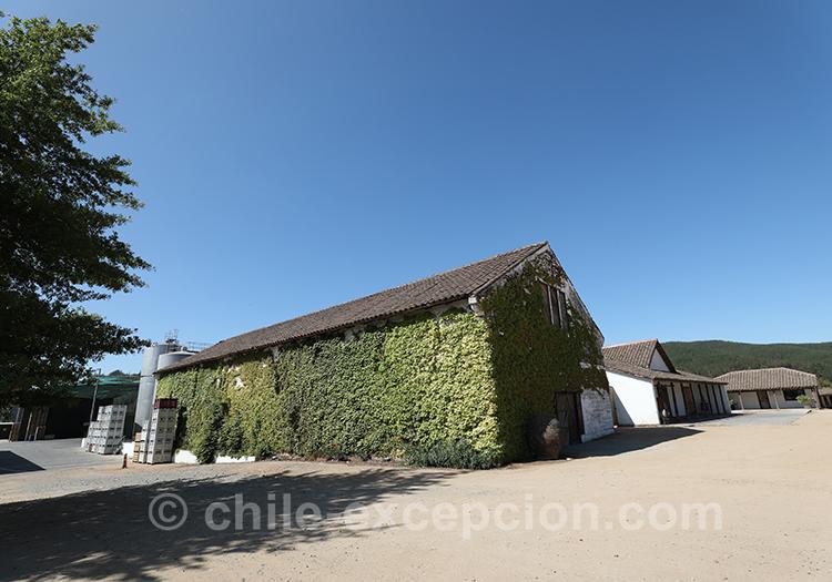 Belle bodega du Chili, Casa Bouchon, vallée del Maule