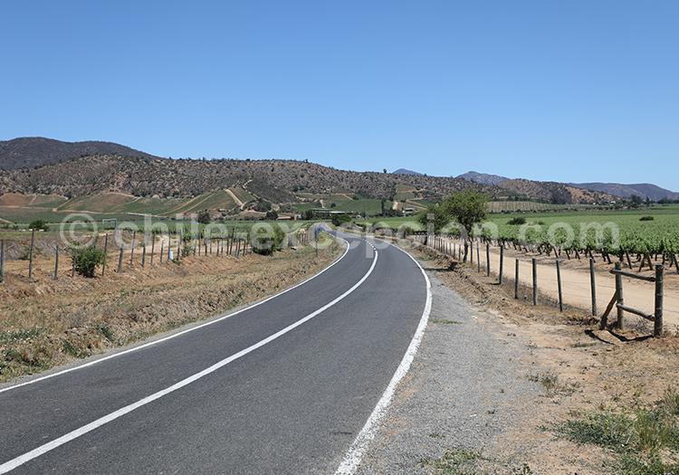 Partir à la découverte de la route du vin au Chili