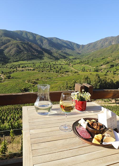 Caves et viñas de la vallée de Limari