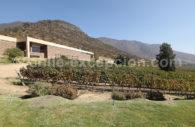 Viña San Pedro Cachapoal Andes, Chili