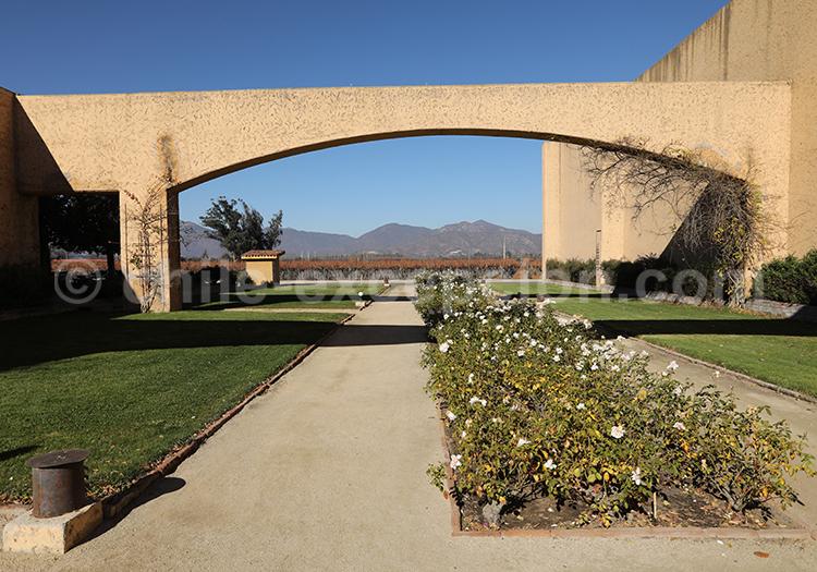 Viña William Cole, vallée Casablanca au Chili