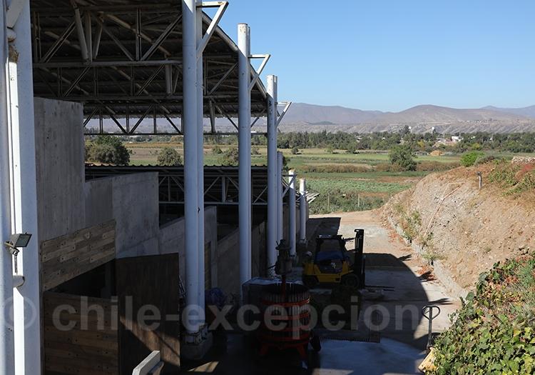 Viña Ocho Tierras, vallée du Limari