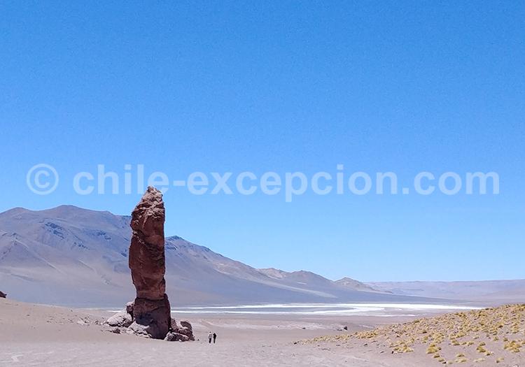 Moai de la Pakana, Atacama