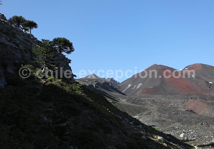 Volcans et glaciers du Chili, Sollipulli