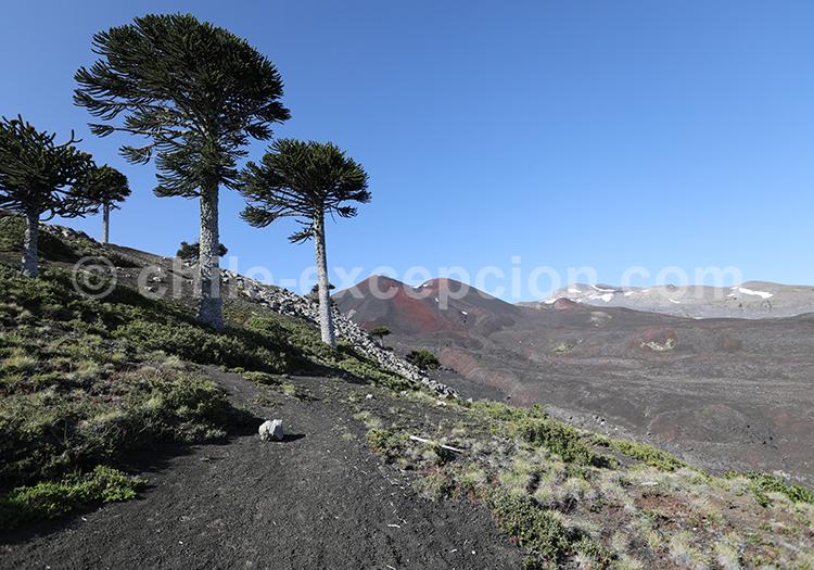 Volcan du Chili, Sollipulli, Cordillère des Andes, Chili